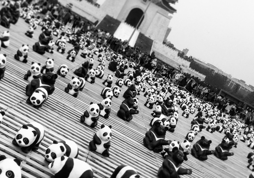 Memorial Hall Panda's on Tour